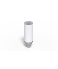 Plastic Abutment with titane ring
