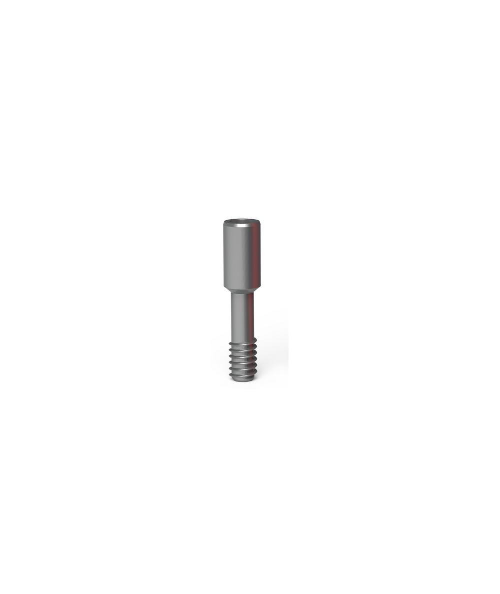 Prosthetic screw ( 10 screw)