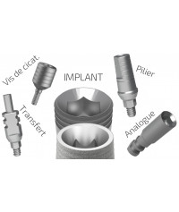Pack ALL IN ( Implant + Abutment + Healing cap+ Analog +Transfer)