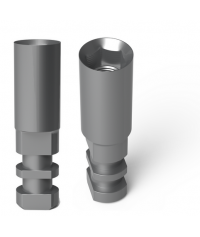 20 Implant Analog