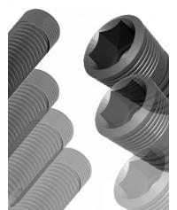 100 Implants (Maer or Ragil )
